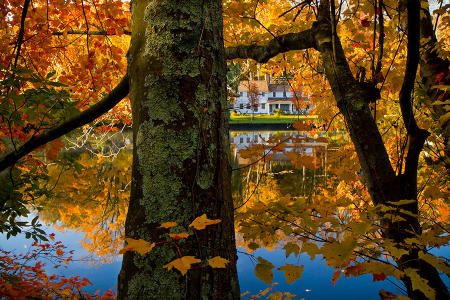 A house on a lower Connecticut River tributary can be seen through vibrant fall foliage.