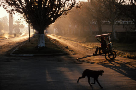 A rickshaw operator waits for customers at sunrise in Antsirabe, Madagascar.