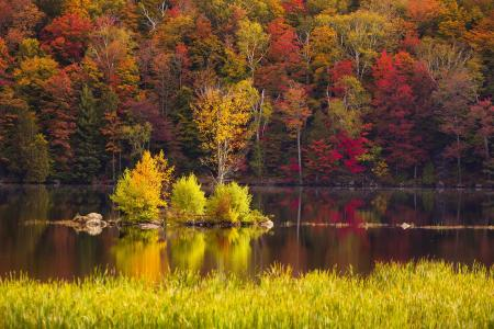 Fall foliage splendor, Kent Pond, Killington, Vermont